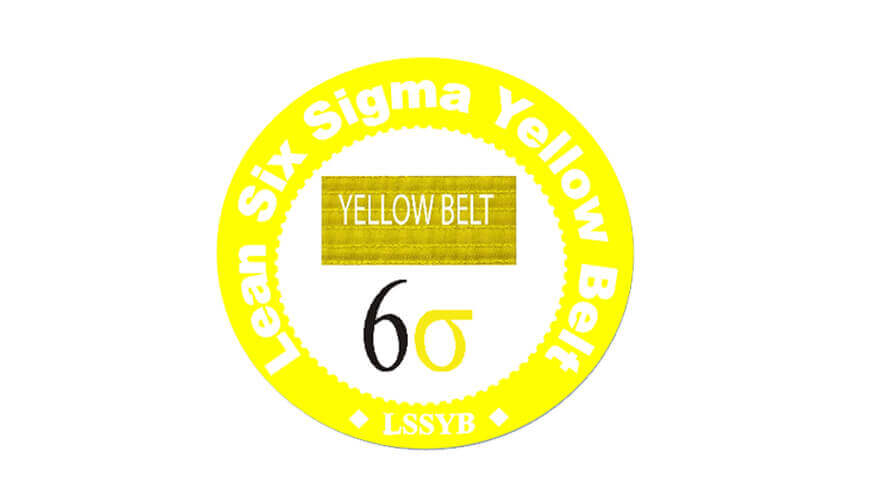 Learn Six Sigma Yellow Belt Business Consultant